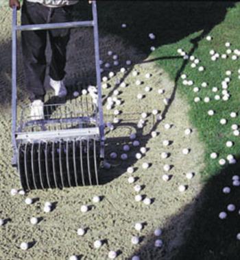 Mini-Picker Ballsammler 48 cm