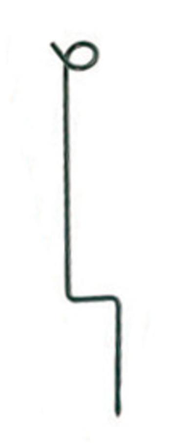 Stake für Seil 36 cm, grün