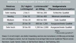 DLI 100 Lichtmessgeräte Turf 3er Set